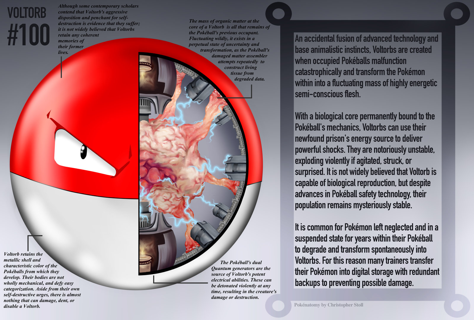 PokeNatomy voltorb