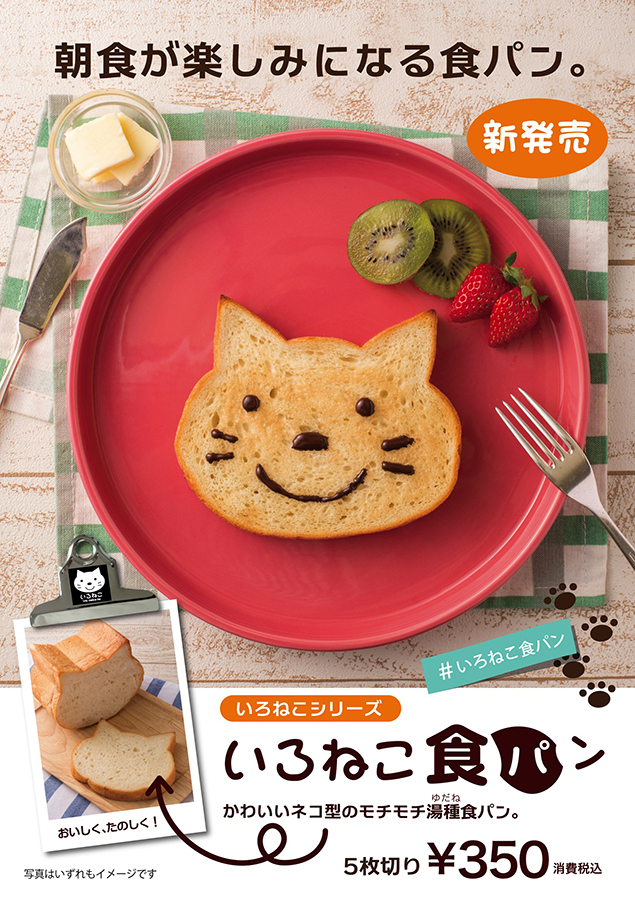 cat bread pane gatto